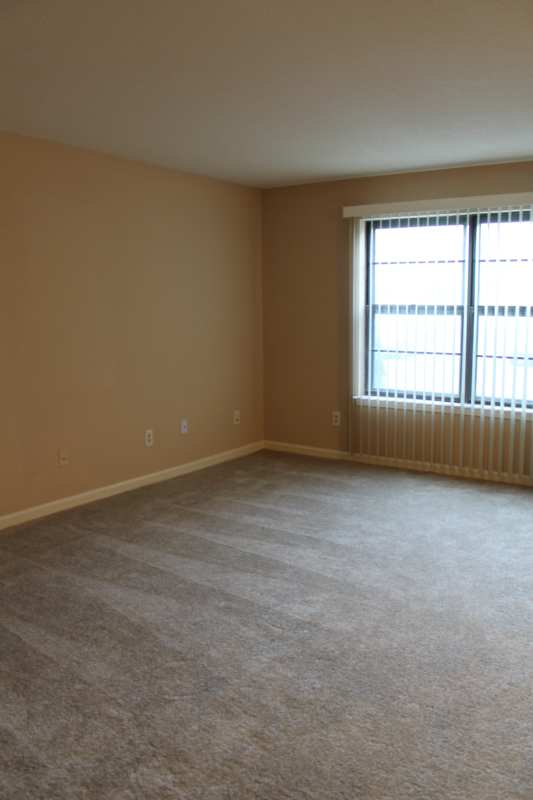 Highgate.hikes.apartment.2bedroom.renovated.living.area