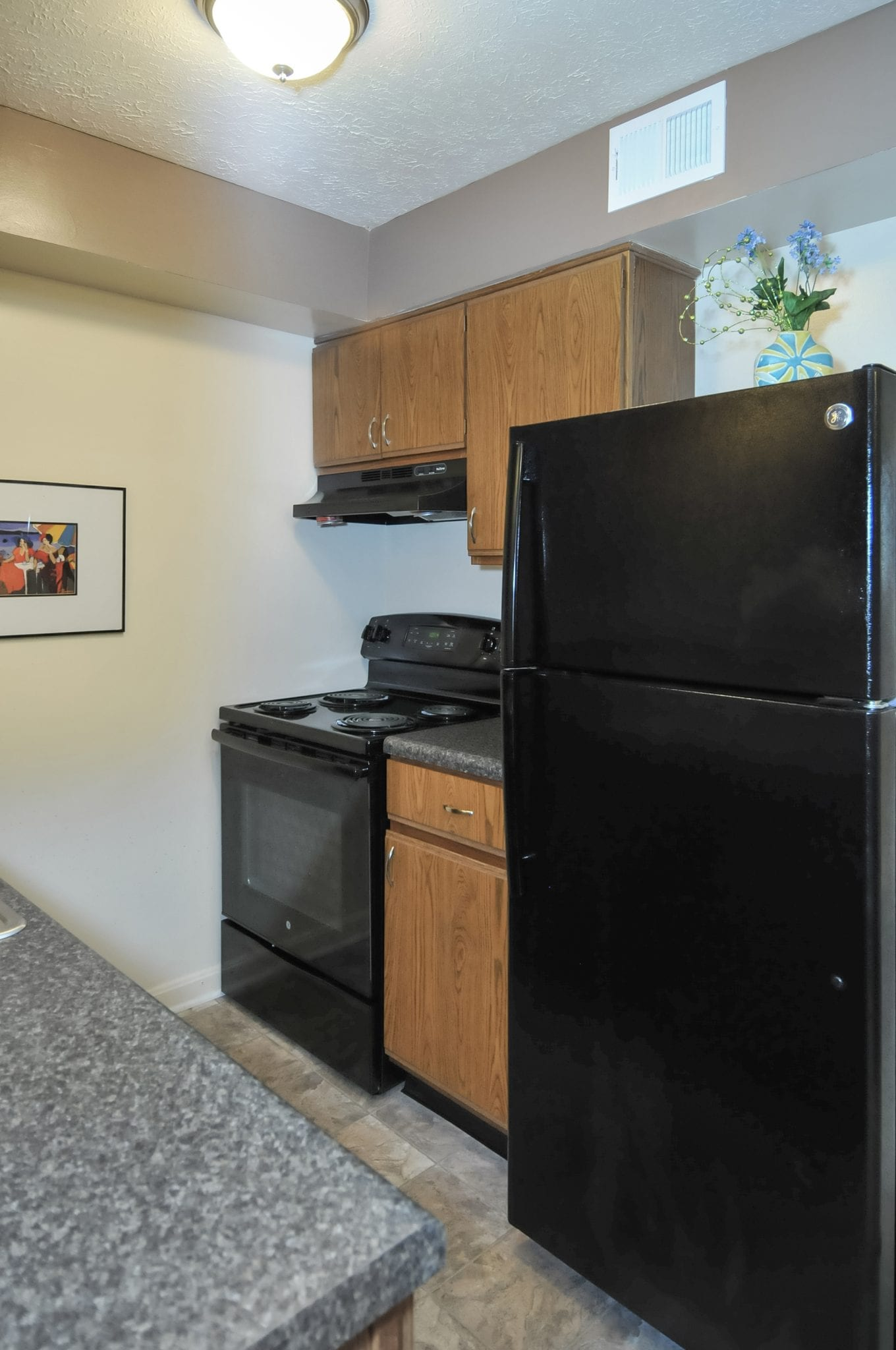 Highgate.springs.apartment.kitchen.refrigerator.range.new